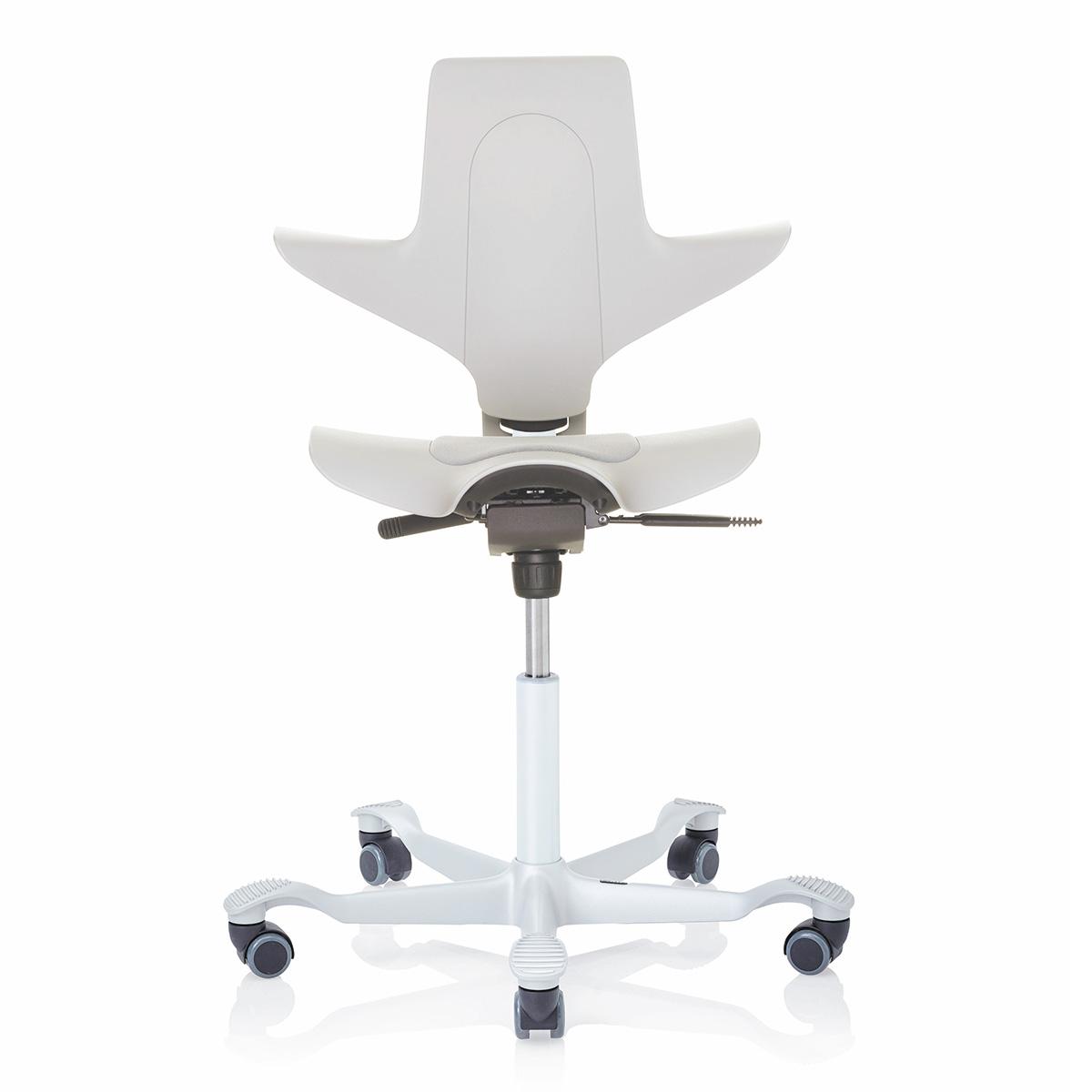HAG Capisco Puls 8010 ergonomischer Drehstuhl mit Rückenlehne